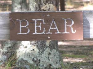 Bear Tent Site