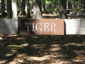 Tiger Tent Site